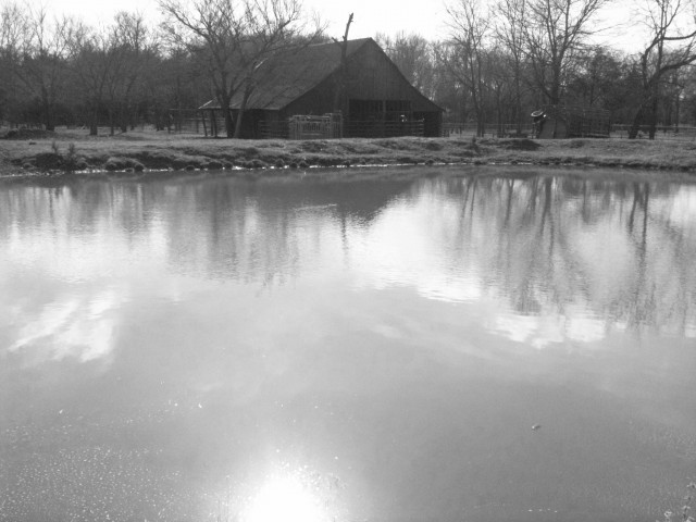 Taylor-Made Ranch Barn Pond