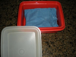 MYO Baby Wipes - Wet Towels - I didn't have to run to the store for baby wipes, I made my own. This method was easy and I used items I already had in my home like coconut oil and baby wash! #TaylorMadeHomestead
