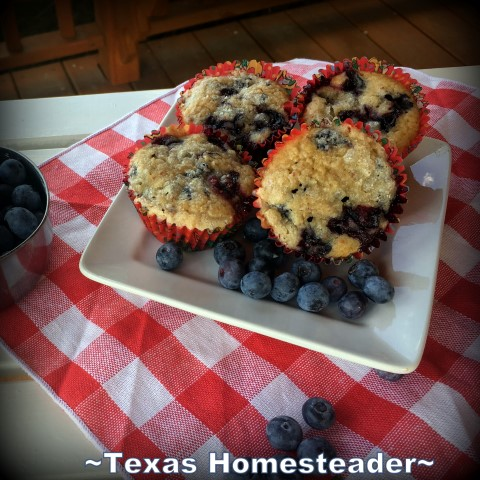 Friends bringing food for us. Do you know what it feels like to be hugged by God? Recently I experienced the unmistakable touch of God through the love of others. #TexasHomesteader