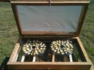 Solar dehydrator. A few tricks to summer cooking without adding extra heat & humidity to our living area. Solar cooking, slow cooker, grilling and MORE! #TexasHomesteader