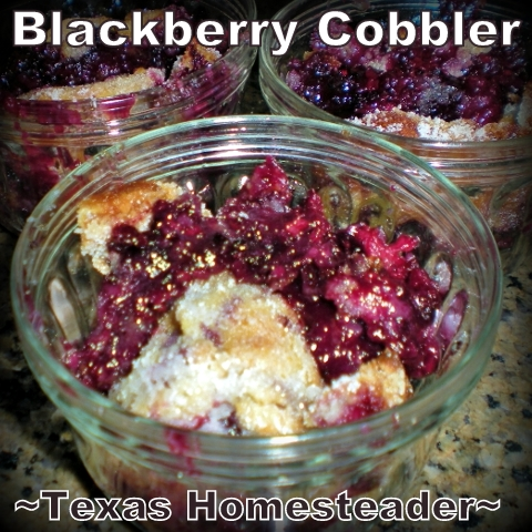 Homemade blackberry cobbler goodness in a snap! My recipe only has 5 ingredients: Flour, sugar, butter, milk and blackberries. #TexasHomesteader