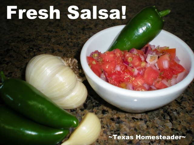 I've always said plant what you love to eat - we love salsa! See what I harvested from the garden for our homemade salsa at supper. #TexasHomesteader