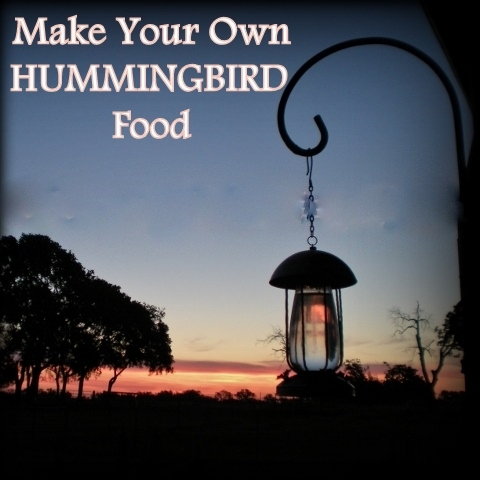 Make hummingbird nectar at home for a fraction of the cost of buying the commercial stuff - only two ingredients! Read how #TxHomesteader