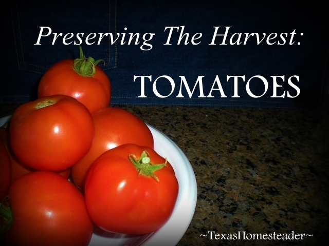 I make sure to preserve the garden tomatoes that we can't eat fresh so not even ONE of them goes to waste. It's easy to freeze them! #TxHomesteader