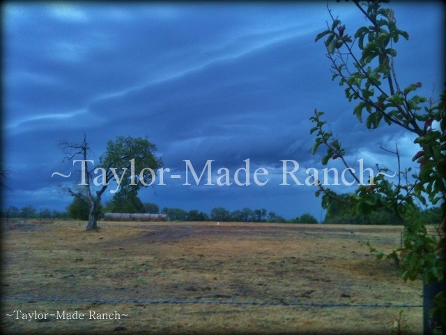 09-13 Storm Clouds #TaylorMadeRanch