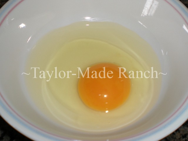 Golden Yellow Yolks - #TaylorMadeRanch
