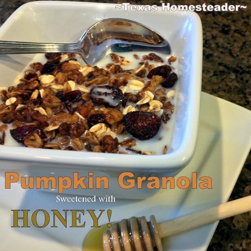 A more natural cereal option than the boxes on the store shelves. This Pumpkin Granola Is Inexpensive, Delicious & SO EASY To Make!! #TexasHomesteader