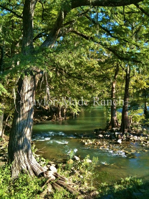 Comal River in New Braunfels #TaylorMadeRanch