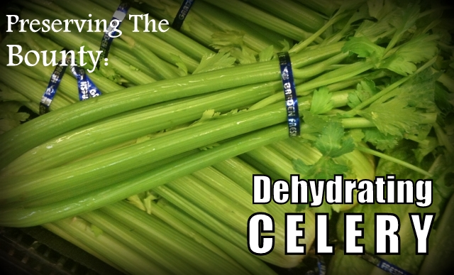 I've learned how to preserve celery so it's always available when I want to use it in a recipe. #TexasHomesteader