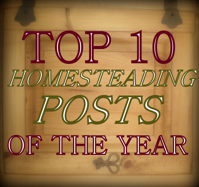 Come see the Top 10 Most Popular Homesteading Posts on my blog! Some crafts, some recipes, and some social observations too! #TaylorMadeHomestead