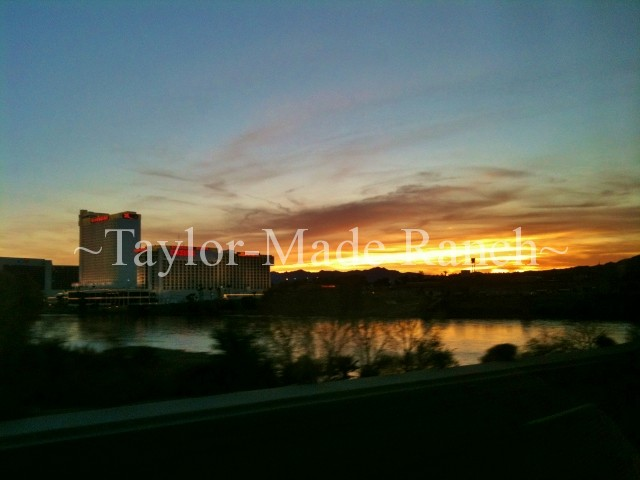 Laughlin Nevada #TaylorMadeRanch