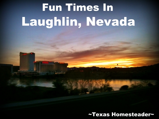 A trip to Laughlin Nevada is more than just gambling - what a fun trip! We also went to NV and saw the casinos & Hoover Dam. #TexasHomesteader