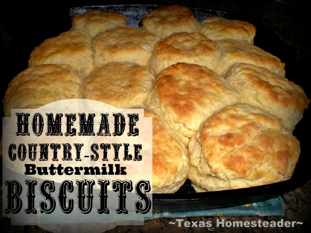 FINALLY! A biscuit recipe that results in fluffy, moist, flavorful biscuits! Check out my recipe. #TxHomesteader