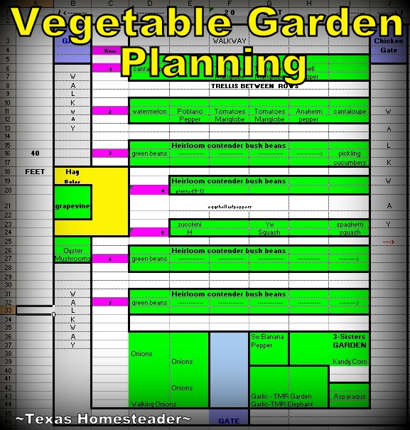 Garden-Planning spreadsheet. See How I Decide What Vegetables To Plant Each Spring Using Past Experience, Companion Planting Guides, Raised Beds, Three Sisters, Etc. #TexasHomesteader