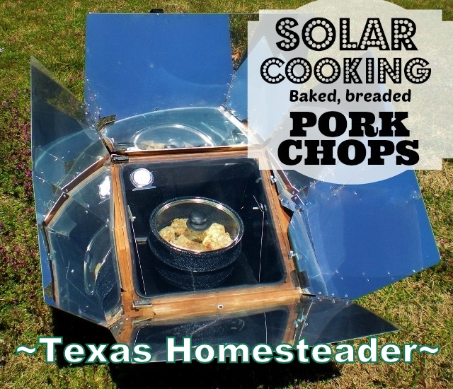 It's hot & humid outside, but I'm not adding it inside our home. How am I going to cook tonight's supper? You won't believe it! #TexasHomesteader