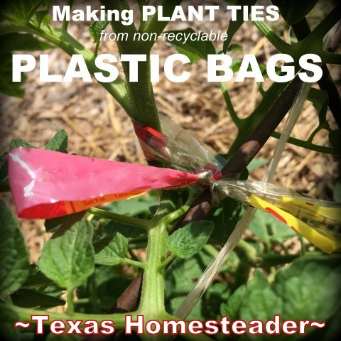 Plastic ties for plants. Keep the cost of vegetable gardening low by thinking outside the box. Come see the various items we use to fill needs in the garden. #TexasHomesteader