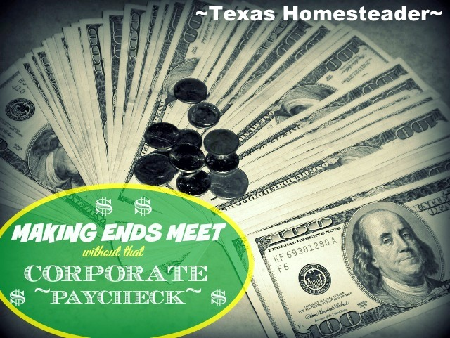 How we successfully keep our monthly income requirement LOW to be able to live w/o a corporate paycheck. Part 1 of a 2-part series! #TexasHomesteader