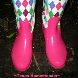 As a breast cancer survivor, I wear lots of pink. But sometimes wonder, do I go too far with all my pinkness? #TexasHomesteader