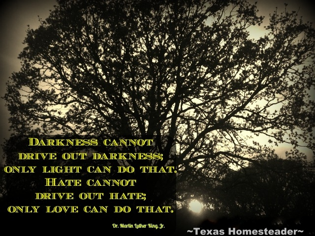 Hate cannot drive out hate - only LOVE can do that. I pray that one day we may all just accept our brother or sister for just what they are... Fellow Humans. #TexasHomesteader