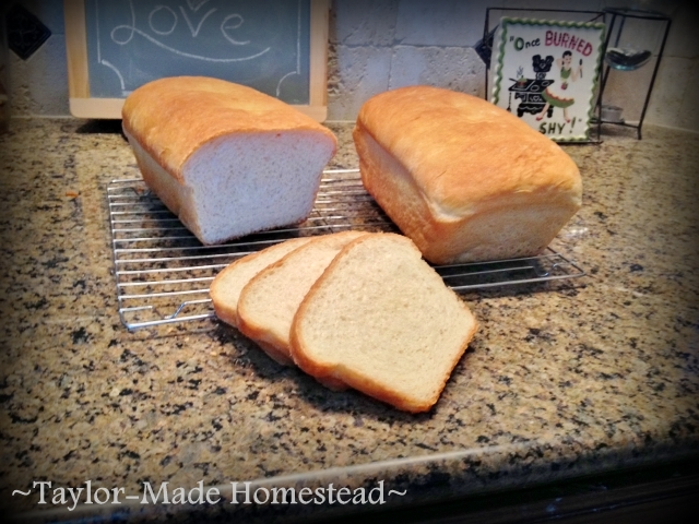 I'm baking LOTS of bread these days but I'm trying to find shortcuts so that I'm not starting over every day. Come see my shortcut tips! #TaylorMadeHomestead