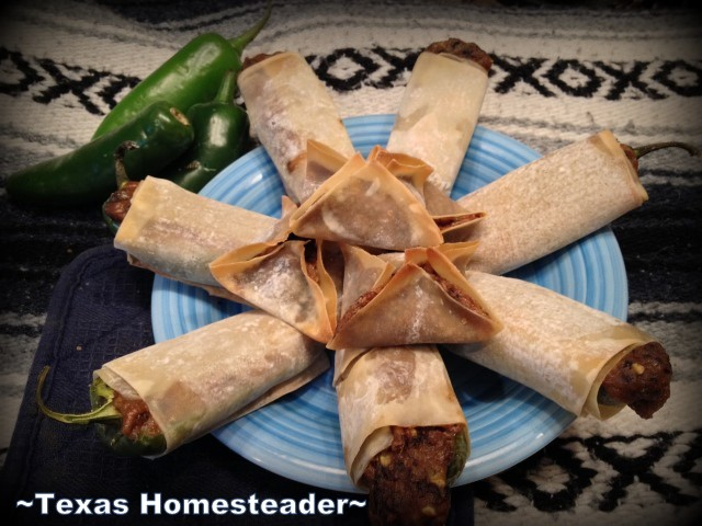 Combination Jalapeno Popper / Egg Roll made with a savory filling of black beans and spices along with onions, garlic, cheese, etc. #TexasHomesteader