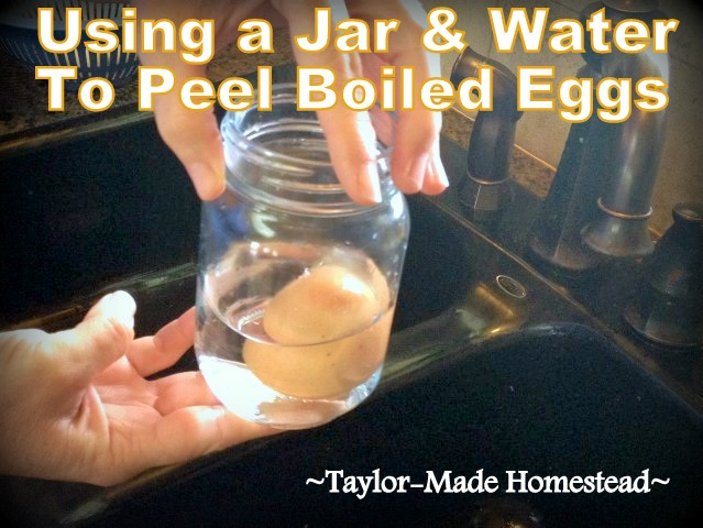 We like the convenience of having pre-peeled boiled eggs in the fridge. There's an easy way to peel eggs using just water and a jar! #TaylorMadeHomestead