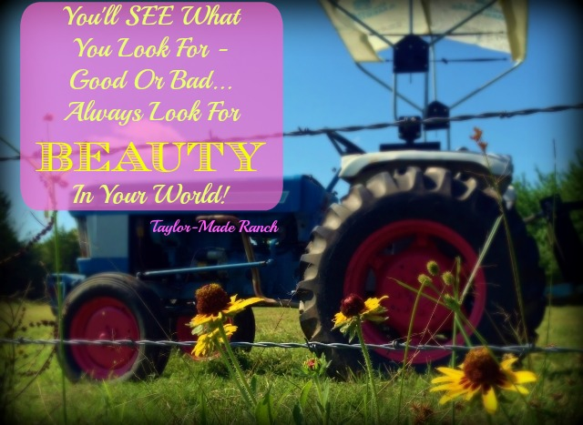 I believe in this life we live that we see what we're looking for - either good or bad. Be sure to look for the beautiful things in your life! #TaylorMadeRanch