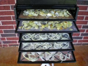 Preserving The Harvest: Dehydrating ONIONS. Don't distress over that glut of onion harvest, preserve it for cooking! See what I did. #TexasHomesteader
