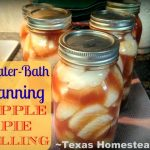 My aunt shared bushes of apples from her tree, so I sat out to preserve them. Come see my 5 favorite ways to preserve fresh apples. #TexasHomesteader