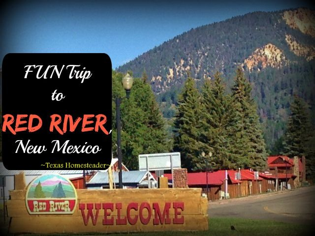 Although Red River, NM is probably best known for its ski facilities. But I much prefer to visit in the summer, it's absolutely beautiful! We visited surrounding areas too. Check out the FUN! #TexasHomesteader