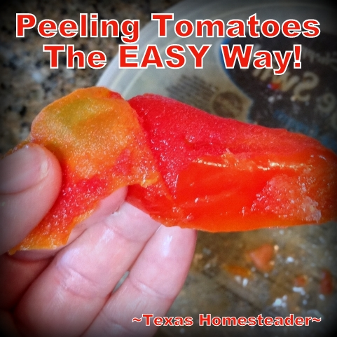 HEAT-FREE Peeling For Fresh Tomatoes - I don't want to add heat and humidity to our home. What's a southern gardener to do? Check out this Homestead Hack #TexasHomesteader