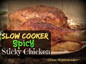 Cooking a Whole Chicken In A Slow Cooker. Today I'm sharing with you the TOP 10 Homesteading Posts of the Year! Curious to see the most popular posts? #TexasHomesteader