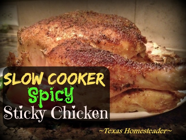 Whole chicken perfectly seasoned and cooked to spicy perfection in a slow-cooker while you're away. Home-Cooked Goodness In A SNAP! #TexasHomesteader