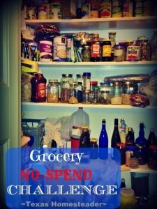 Month-Long Grocery No-Spend Challenge. Today I'm sharing with you the TOP 10 Homesteading Posts of the Year! Curious to see the most popular posts? #TexasHomesteader