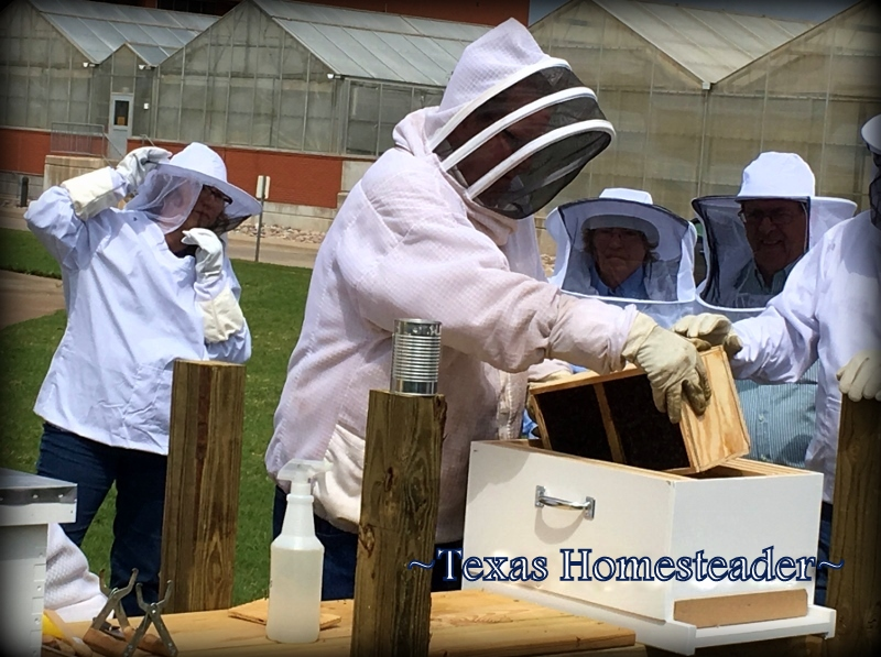 Noble Foundation Beekeeping Seminar. We've never kept bees before so we're NewBees! There's a lot to do before we actually receive any bees, come see how we prepared. #TexasHomesteader