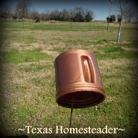 Painting coffee canister. She pulls a plastic coffee can out of the recycling and when she's through? I LOVE this planter! Quick. Easy. CUTE! #TexasHomesteader