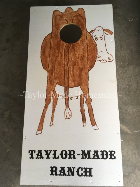 We wanted to make our own custom Cornhole Game for our family reunion. Thankfully it was EASY and it turned out way cute! Check it out. #TaylorMadeHomestead