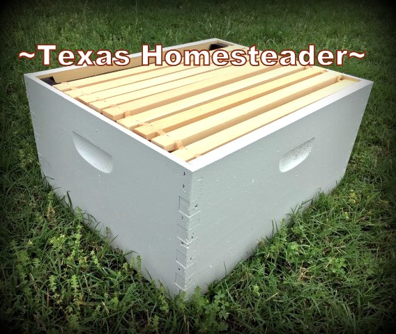 An empty deep hive box with frames. Beginning Beekeeping Series: Today we're talking about why and how to expand your bee hives. (We're using Langstroth hives) #TexasHomesteader