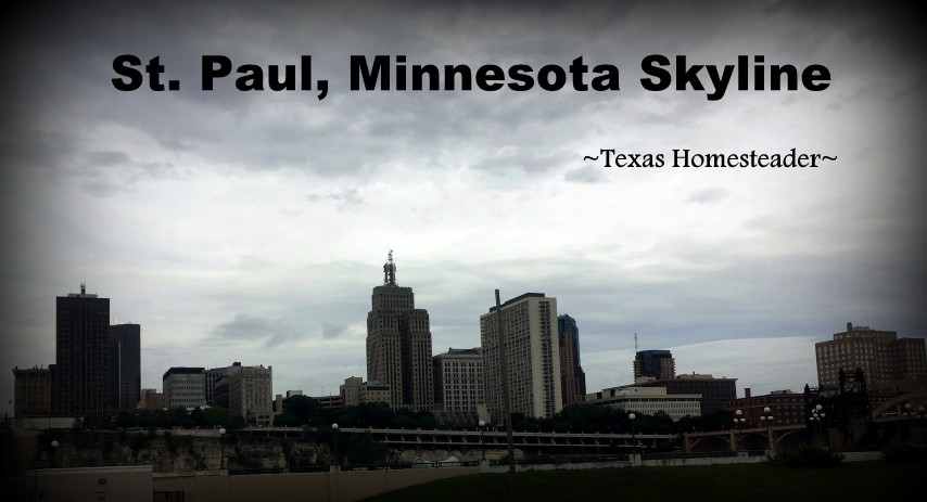 A Special 'Wanna Get Away' fair on SW Airlines that made it affordable for us to fly to Minneapolis, MN. Come See The Fun We Had There! #TexasHomesteader