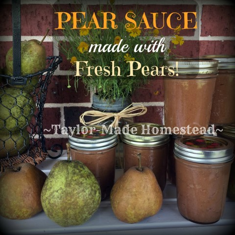 Pear Sauce is much like applesauce but made with pears. After being given a supply of pears I gave pear sauce a try. Check it out! #TaylorMadeHomestead