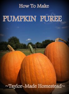 MYO Pumpkin Puree From Fresh Pumpkins, SO EASY - Come See How I Make Puree From Our Heirloom Garden Pumkins. #TaylorMadeHomestead