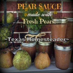 Pear Sauce is much like applesauce but made with pears. After being given a supply of pears I gave pear sauce a try. Check it out! #TexasHomesteader