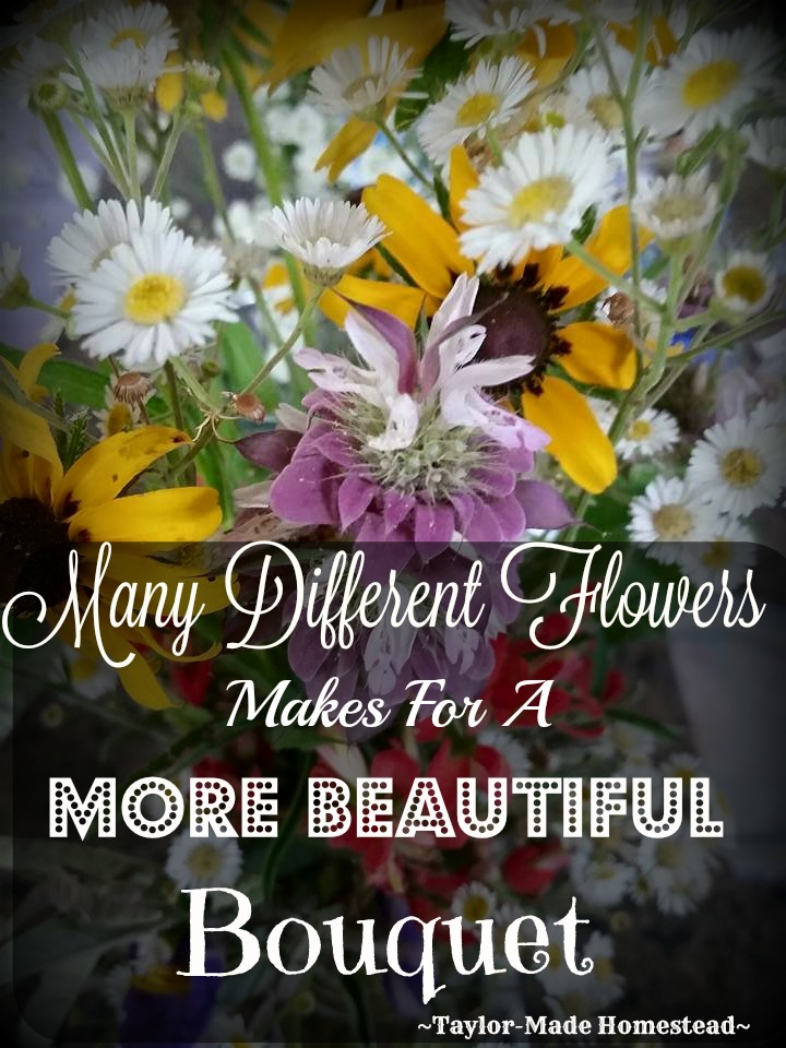 Let's show kindness & tolerance for others whose opinions may not exactly mirror our own. Remember: Many Flowers Makes For A Beautiful Bouquet! #TaylorMadeHomestead