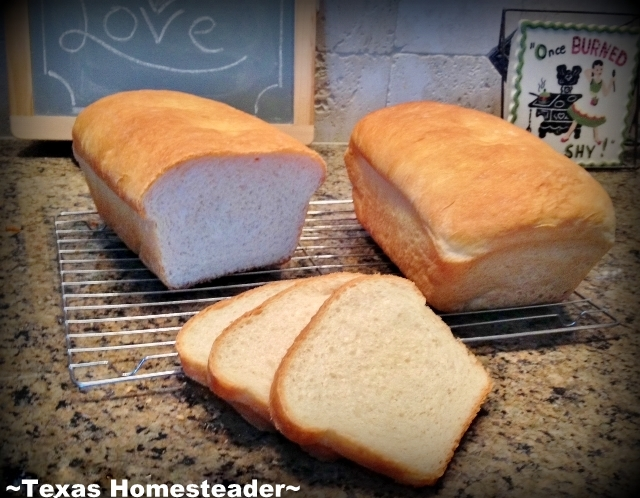 FINALLY a soft, flavorful sandwich bread! My KitchenAid speeds the kneading time significantly & the results? Light, fluffy, DELICIOUS! #TexasHomesteader