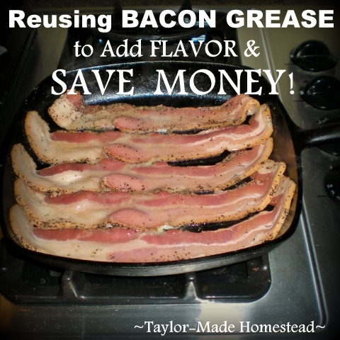 Many of us remember our grandmothers kept a little grease can on the back of her stove? Grandma knew that grease could serve a valuable purpose in her kitchen. I can certainly tell ya that bacon grease is a precious commodity in my kitchen. I'm sharing 4 easy ways we reuse bacon grease in the Taylor household. #TaylorMadeHomestead