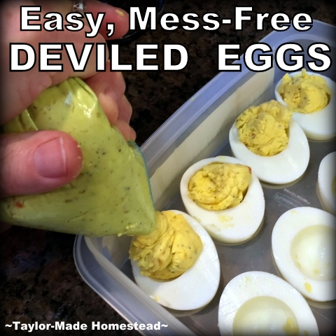 I've learned an easy, mess-free way to make deviled eggs. I can't believe I spent so many years making them the hard way! #TaylorMadeHomestead