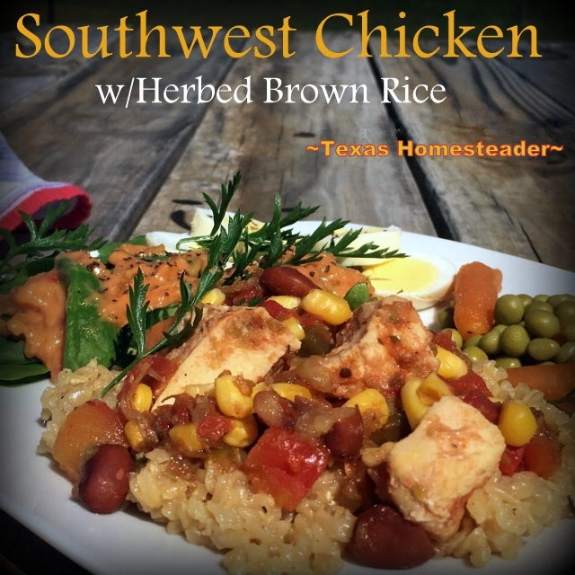 Here in NE Texas I want to keep cooking heat & humidity outside. So I cooked my SW Chicken with seasoned brown rice in my solar oven! #TexasHomesteader