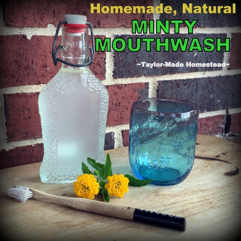 Reusable, repurposed flip-top bottle. Making my own Homemade Minty Mouthwash helps me toward the zero-waste lifestyle I strive for. And using only simple ingredients! #TaylorMadeHomestead