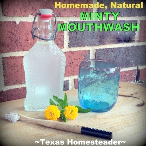 Making my own Homemade Minty Mouthwash helps me toward the zero-waste lifestyle I strive