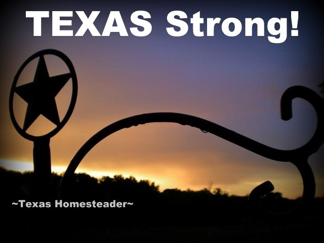 Our fellow Texans to the south of us on the Gulf Coast really took a lashing when the hurricane came to shore. But we're TEXAS Strong! #TexasHomesteader